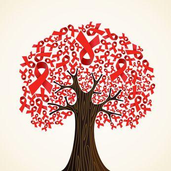 Cet article fournit une méthode de réflexion afin de bâtir un protocole naturopathique pour aider les malades à affronter le VIH et le SIDA.
