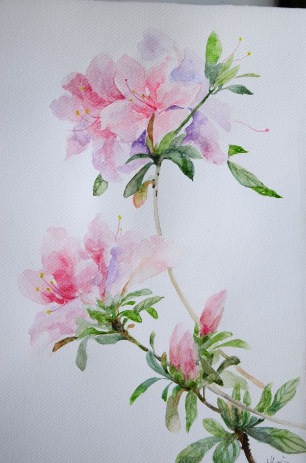 jordan        Watercolor Flowers Watercolors         release retro Art watercolor date Pink Artists and