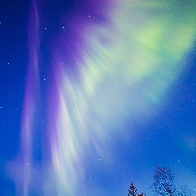 Auroras waving goodbye for the summer last night in #Rovaniemi #Lapland #Finland  #visitrovaniemi  #allaboutlapland #visitfinland #visitlapland #visitfinlandjp #ourlapland #ourfinland #onlyinlapland #ilovelapland #ig_finland #munlappi #suomi100 #outdoorfinland #thisisfinlandofficial #neverstopexloring #mtvsaa #auroraborealis #northernlights #nordlichter #ロバニエミ #ラップランド #フィンランド #あさやけ空 #罗瓦涅米 #拉普兰 #芬兰 #北极光