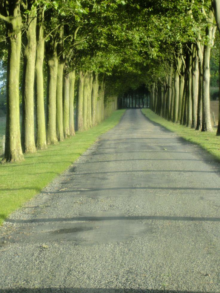Chateau Driveway, France