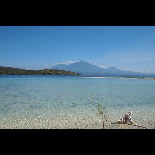 Plagedésertesur Menjangan dans la régence de Buleleng (nord) à Bali en Indonésie.