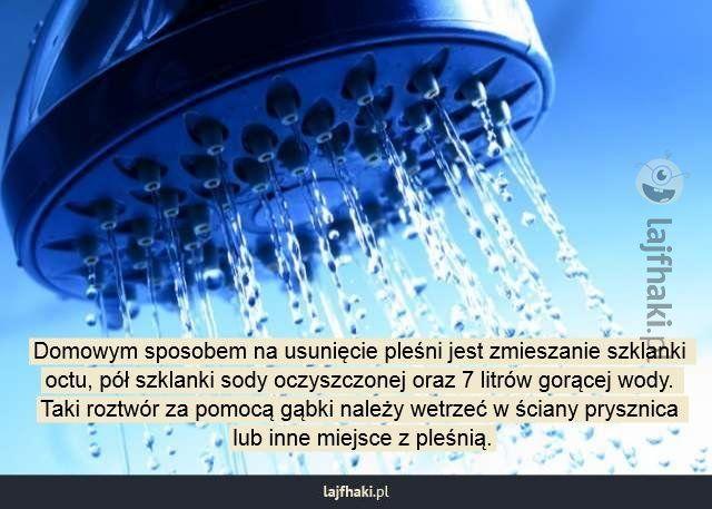 Jak usunąć pleśń w łazience? - Domowym sposobem na usunięcie pleśni jest zmieszanie szklanki octu, pół szklanki sody oczyszczonej oraz 7 litrów gorącej wody. Taki roztwór za pomocą gąbki należy wetrzeć w ściany prysznica lub inne miejsce z pleśnią.