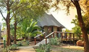 Guests can enjoy the wildlife exploring the surrounding lush vegetation