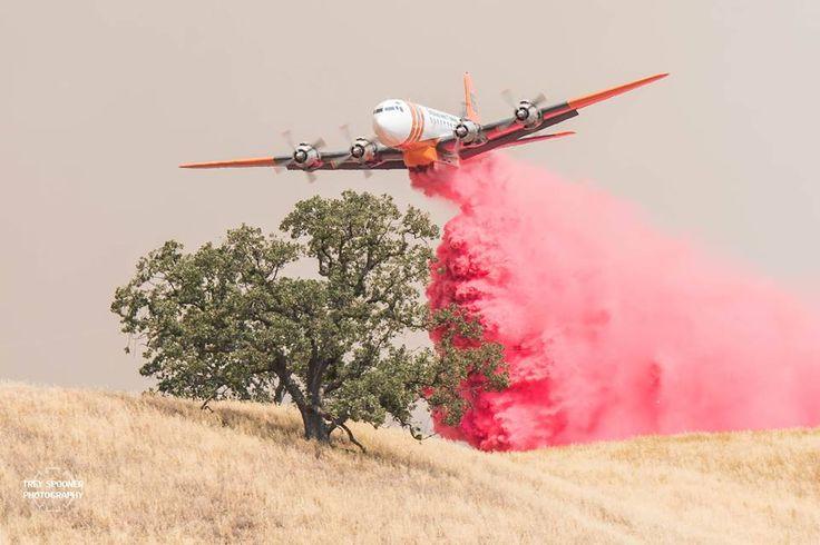 RANGE FIRE - August 26, 2016 - Off Deer Trail Dr & Hwy 223, 6 miles East of Arvin, California - (T-66) Douglas DC-7B (N6353C) (Built 1958) Erickson Aero Tanker (1)