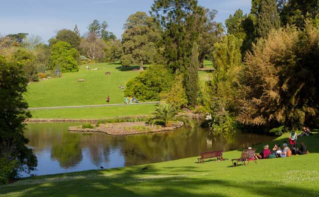 Royal Botanic Gardens Melbourne -  Extending over 36 hectares and displaying more than 50,000 plants, the Royal Botanic Gardens...