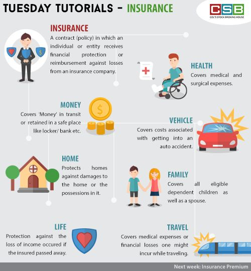 How many of us are insured with all these policy types? Did you know about all these policies? #infographic #tuesdaytutorial #insurancepolicy