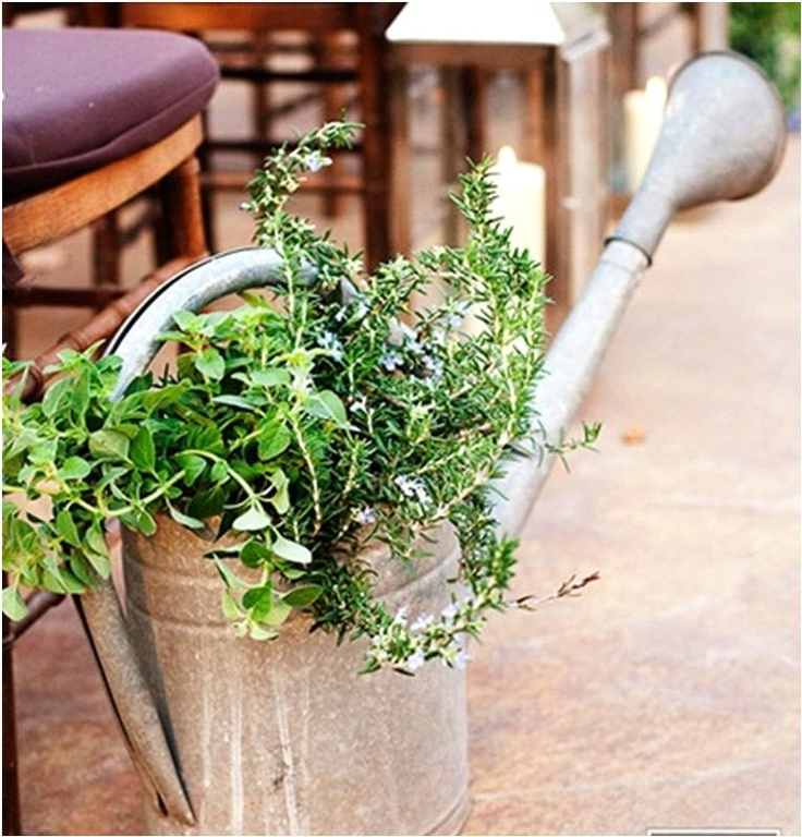 Herb filled watering can. Perfect party decoration