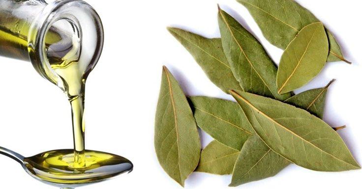 От суставных и мышечных болей поможет лавровое масло. Лавровые листья для этого снадобья я выбираю насыщенного, оливкового цвета. Это признак того, что в них сохраняются все полезные свойства свежего листа. Следите за собой и БУДЕТЕ ЗДОРОВЫ и красивы! Сначалалистья измельчают, 30 гр залитьстаканом любого растительного масла. Плотно закрытьбутыль и поставитьв тумбочку на 2 недели. Периодически