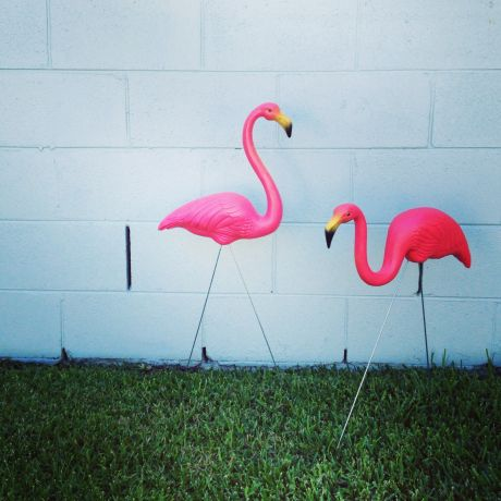 Pink plastic flamingos for the garden - or maybe stashed in a topiary by the front door?