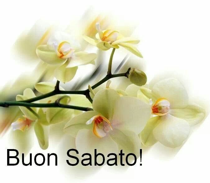 buon sabato: good Saturday!