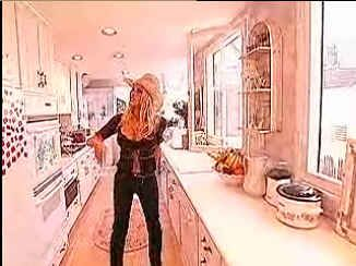 Pamela Anderson's kitchen