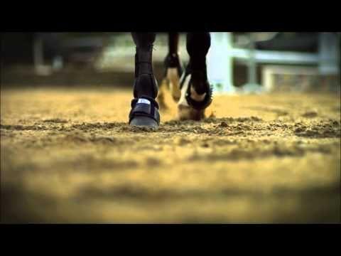 On dit que l'équitation n'est pas un sport . - YouTube