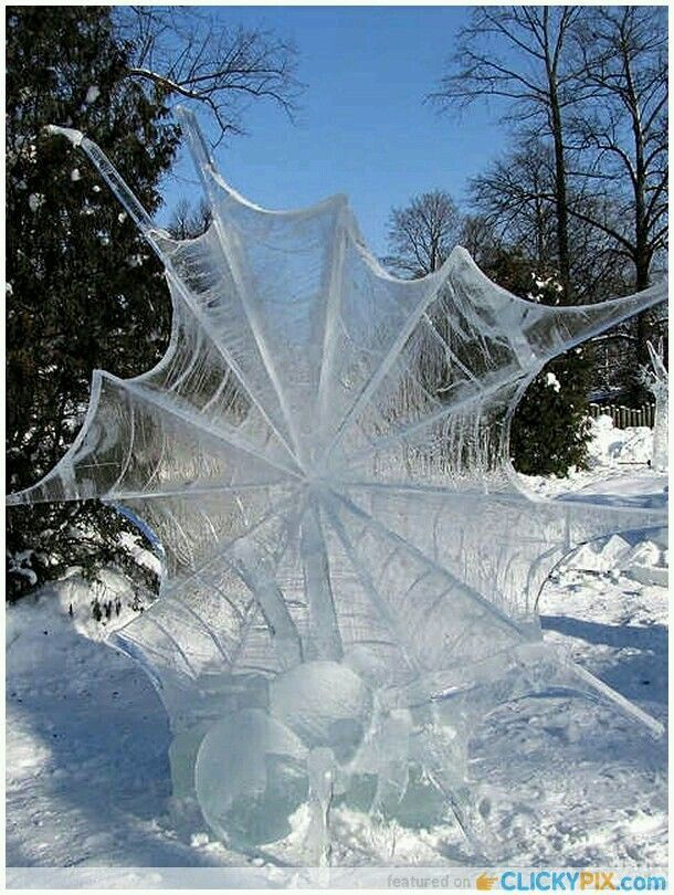 Ice spiders make beautiful webs.