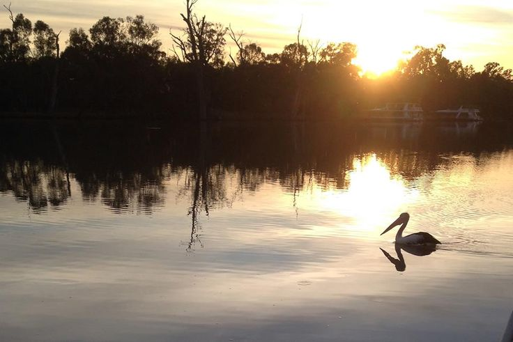 Dawn on the River Murray, Mildura Victoria. #Mildura #big4milduradeakin
