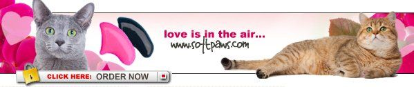 Love is in the air... With Soft Paws.   Ordering is simple! Order online securely with your credit card (VISA, MasterCard, AMEX or Discover) or print and mail the order form with your credit card number or check; or fax your credit card information to our office; or call us 24/7 at 1-800-989-2542  We'll be happy to take your order or answer any questions you may have about Soft Paws.   TELEPHONE: 1-800-989-2542 EMAIL: info@softpaws.com #softpaws