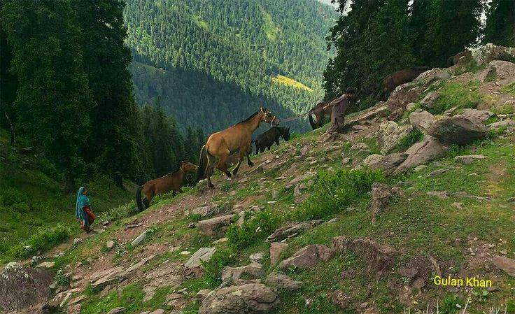 Nomads beauty of Azad Kashmir Pakistan