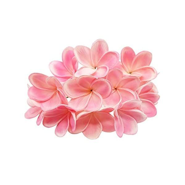 A Comprehensive Overview On Home Decoration In 2020 Plumeria Flowers Plumeria Flowers Bouquet