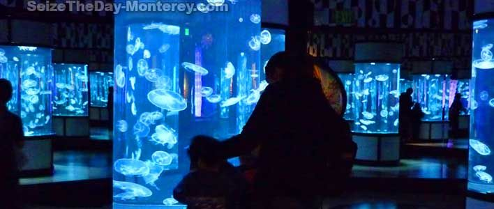Monterey bay aquarium discount coupons