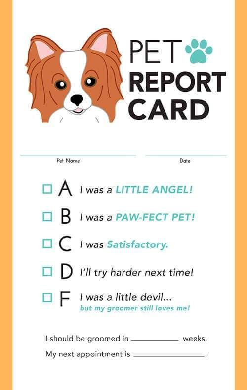 Pet Report Card Template In 2021 Report Card Template Card Templates Modern Pet