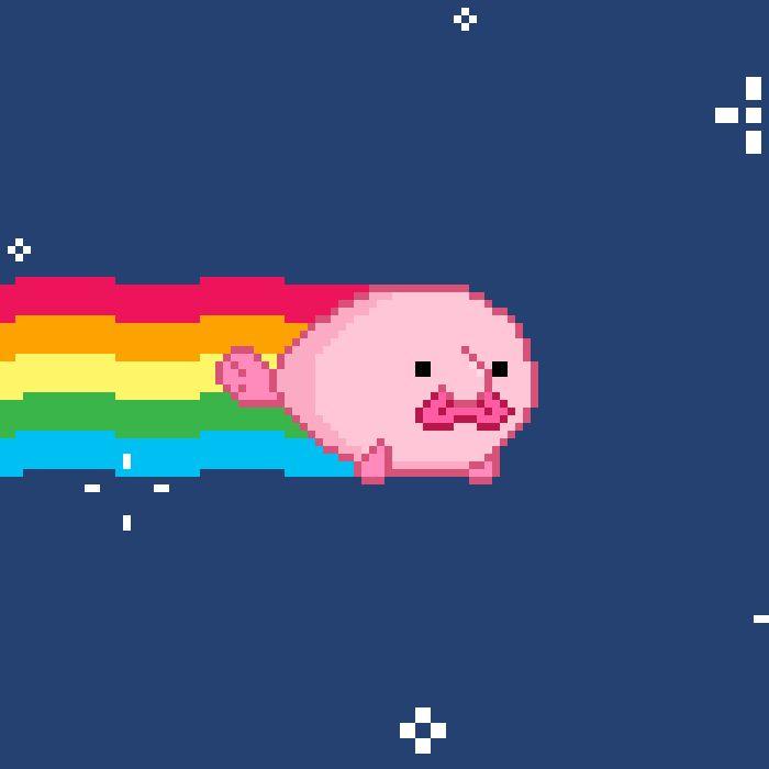 Blobby the Blobfish : Photo
