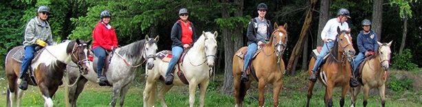 What Is Equine-Facilitated Psychotherapy and Equine-Facilitated Learning | PATH International