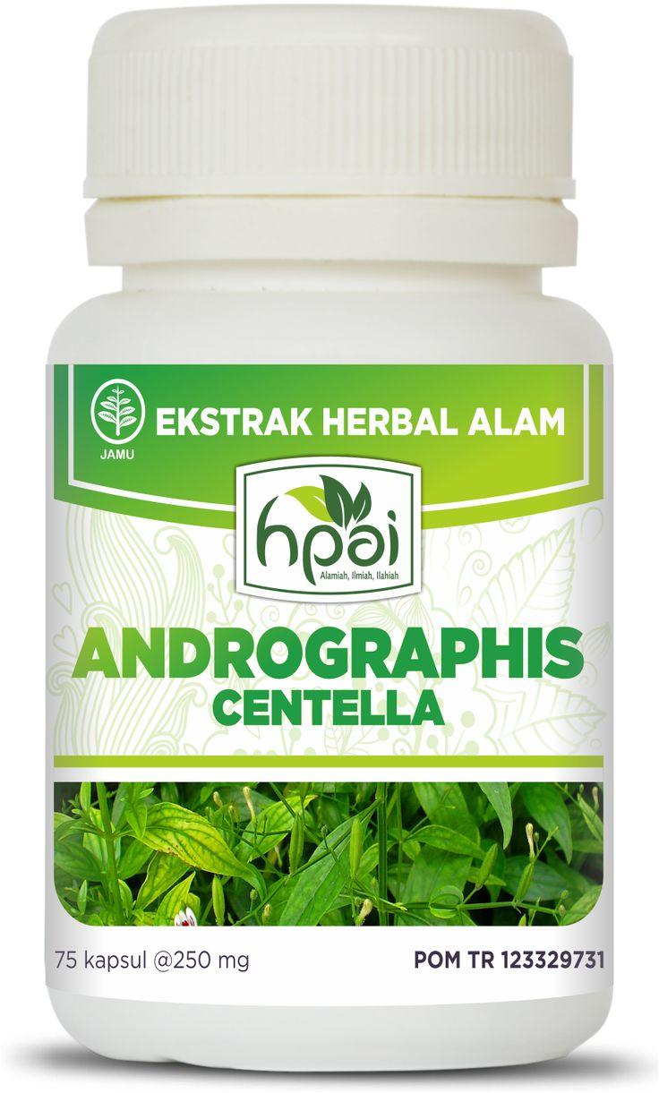 Obat Herbal Alami Penurun Panas