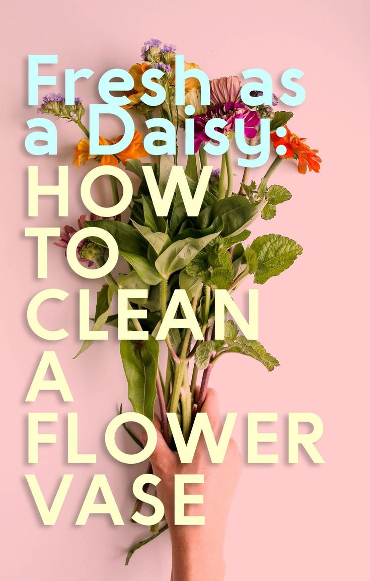 Fresh As A Daisy: How To Clean A Flower Vase Fix Yahoo!