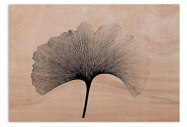 Gingko Leaf Xray, Birchwood on OneKingsLane.com