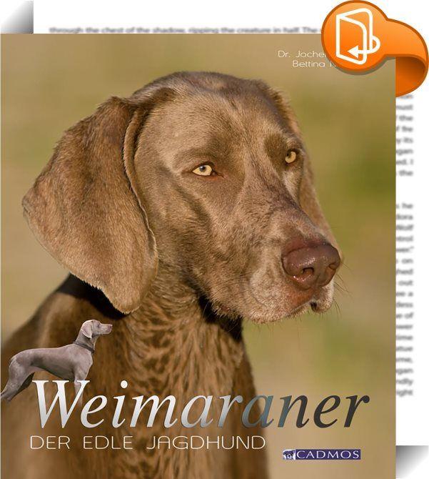 Weimaraner    :  Der Weimaraner ist aufgrund seiner besonderen Schönheit und seines Nimbus der Exklusivität, der ihm den Status des Bentley unter den Hunderassen verleiht, immer häufiger in den Medien zu sehen. Entsprechend hoch ist aktuell die Nachfrage nach Welpen dieser Rasse. Demgegenüber vergleichsweise unbekannt ist jedoch das komplexe Wesen dieser Hunderasse, das hier besonders dargestellt werden soll. Seine Schönheit ist sicher eines der auffälligsten Merkmale des Weimaraners: ...