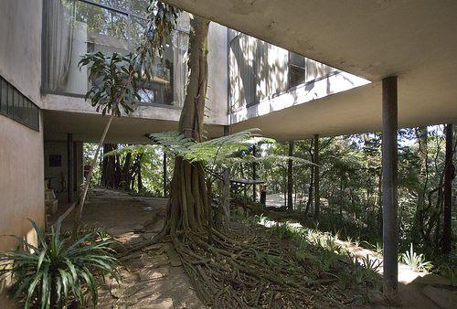 brazil architecture. lina bo bardi. the glass house
