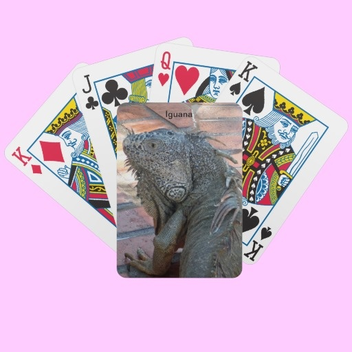The iguana will become a topic of conversation during your card game
