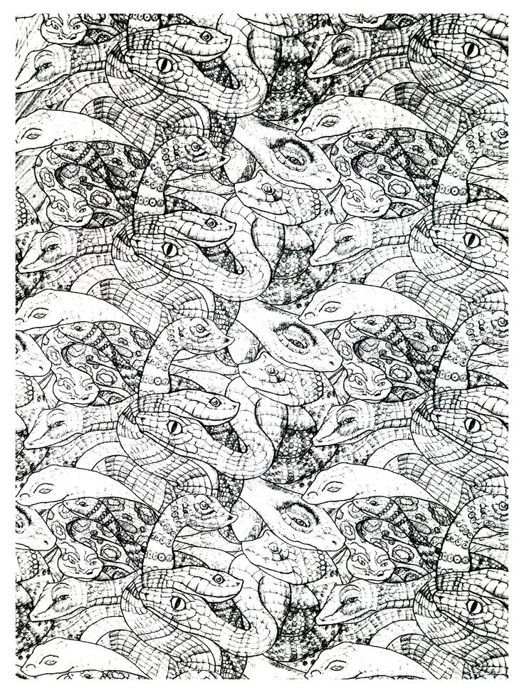 Free coloring page coloring-adults-snakes-complex. Very complex coloring page with snakes (2nd model)