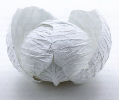 """Yasuhiro Suzuki—Cabbage Bowls, paperclay. Each leaf """"peels"""" off to become its own functional bowl."""