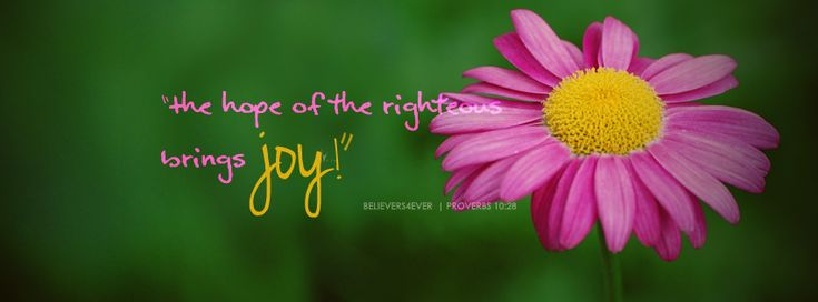 The hope of the righteous brings joy Proverbs 10:28 Free #Christian Facebook timeline covers and banners with #bible verses, and inspirational quotes!
