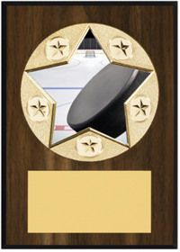 Star Hockey Emblem Plaque, Plaques   Dinn Trophy The smooth walnut-tone finish & exclusive star emblem on this plaque will show your appreciation!