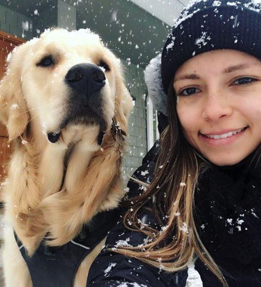 Winter! #dog #fitdog #fitfamily #goldenretriever #goldenretrieverpuppy
