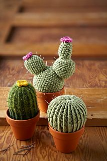 knit cacti-- even cuter when used as a pincushion!