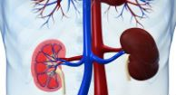 Gene Variants Predict Which #Lupus Patients Will Have Kidney Trouble (Healthline: Aug 23, 2013)