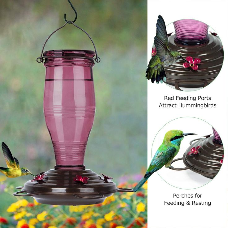 BOLITE 18006R Hummingbird Feeder, Vintage
