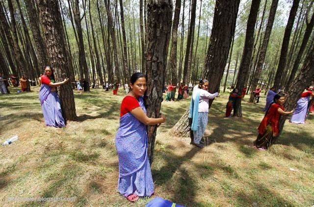Nepalese people hugging trees on World Environment day. I