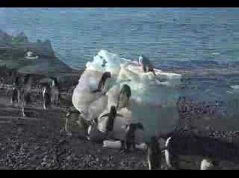 ▶ Antarctica in 5 minutes - YouTube