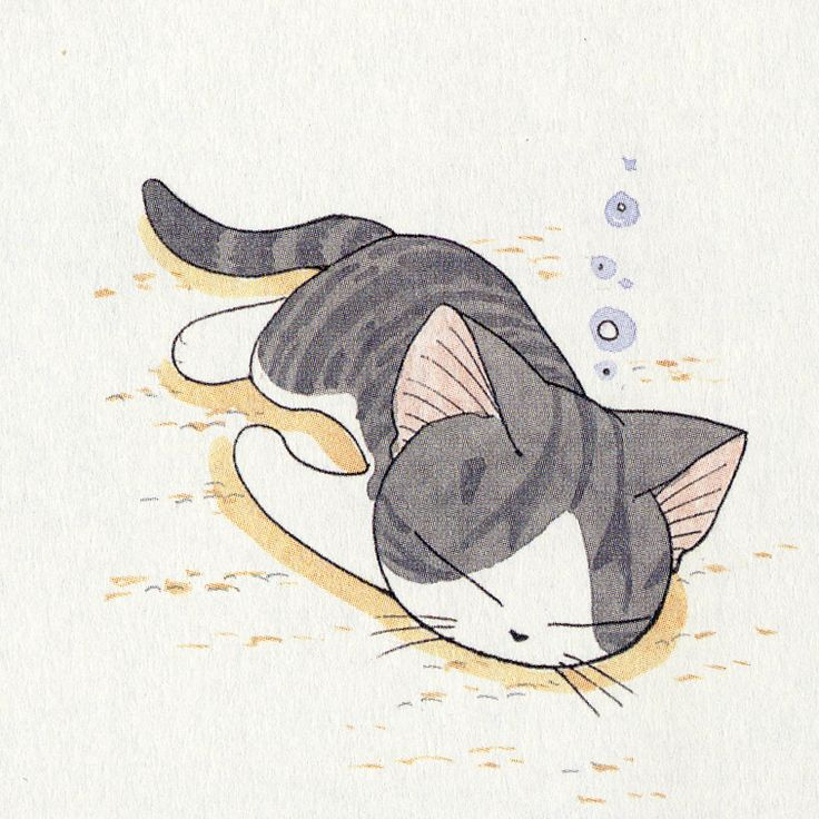 Chi's Sweet Home official tumblr : 画像