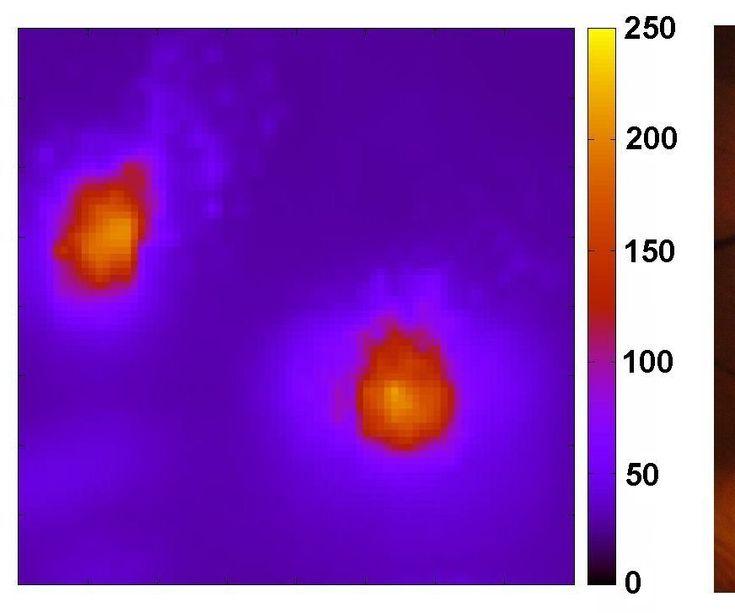 DIY thermal imaging infrared camera