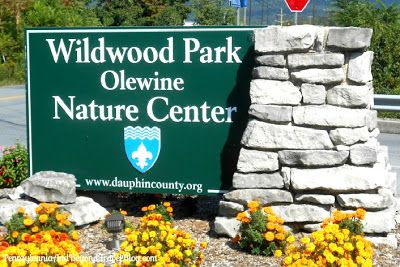 Wildwood Park & Olewine Nature Center in Harrisburg Pennsylvania