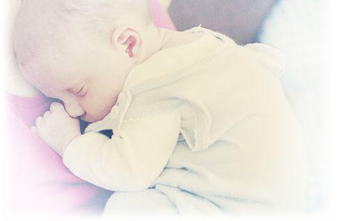Entwicklung vom Embryo zum Fötus & Baby I Penaten®