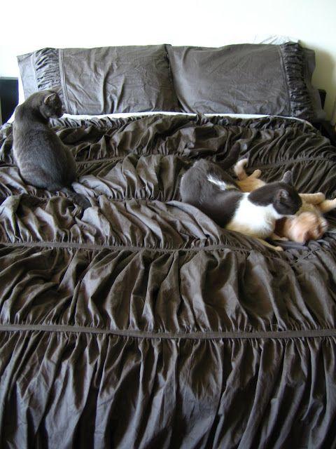 DIY Anthropologie Cirrus Duvet and pillows in grey