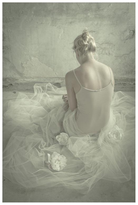 effimero by Monia Merlo