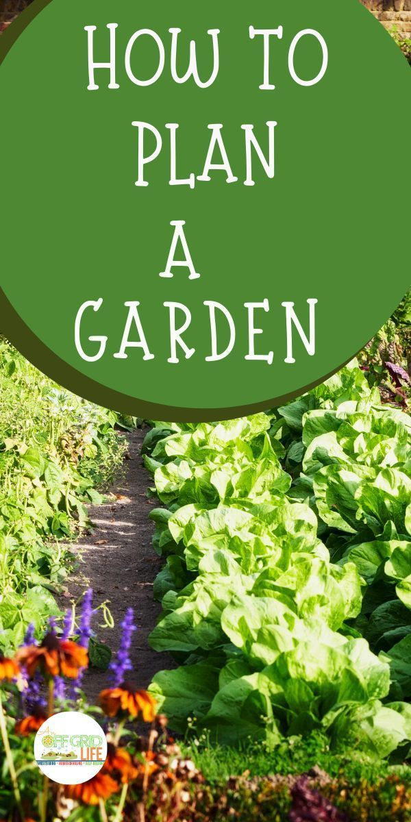 How To Plan A Garden In 2020