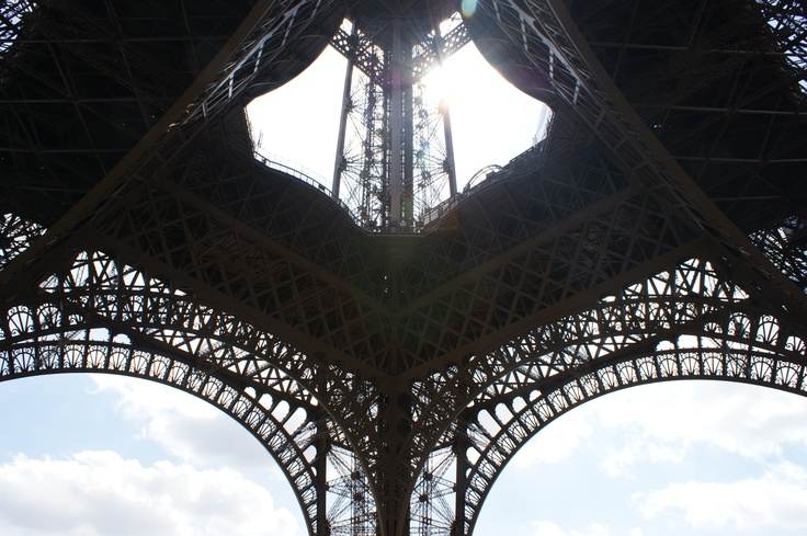 The Eiffel Tower in view of frog 3