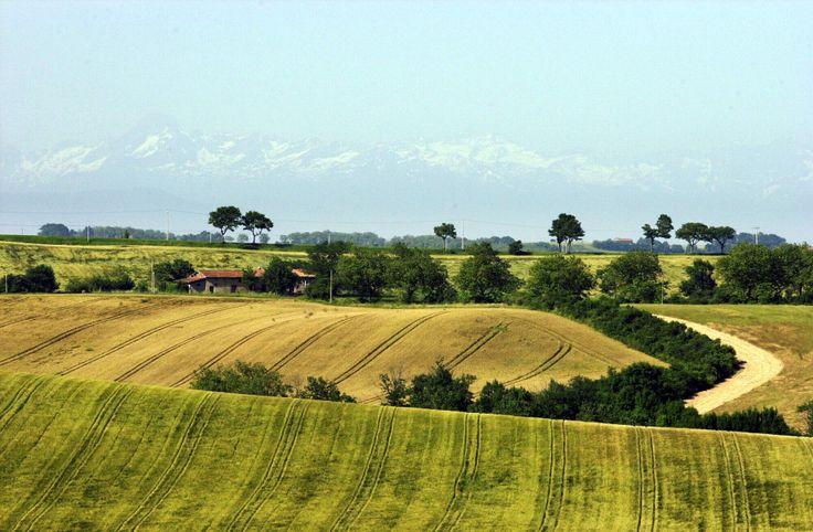 Coteaux, collines et vallons - Les coteaux du Lauragais (Haute-Garonne)  © CRT Midi-Pyrénées / D. Viet #TourismeMidiPy #MidiPyrenees #France #landscapes #lauragais #hautegaronne